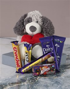 gifts: Puppy Love and Chocolate!