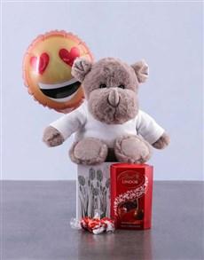 gifts: Rhino Plush in Box Surprise!