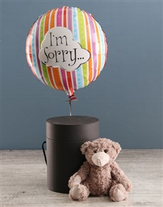 gifts: Im Sorry Balloon With Teddy Bear In Hat Box!