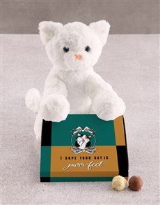 gifts: Cat Teddy With Chocolate Tray!