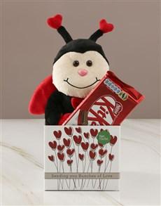 gifts: Ladybug  Love And KitKat Hamper!