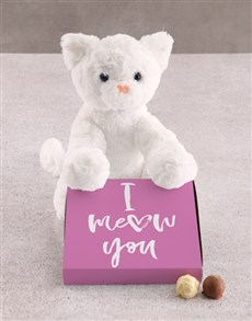 gifts: Kitty Cat Teddy With Chocolate Tray Hamper!