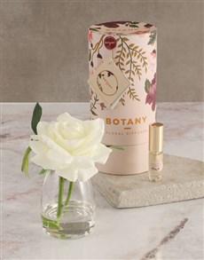 gifts: Botany Small Cream Silk Rose Diffuser!