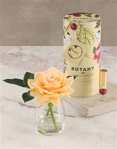 gifts: Botany Small Peach Silk Rose Diffuser!