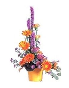 flowers: Royal Flush!