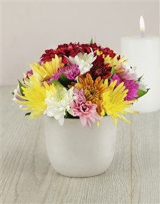 flowers: Mixed Daisies in a Petite Pottery Vase!