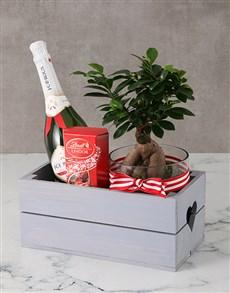 gifts: Brilliant Bonsai Heart Crate!