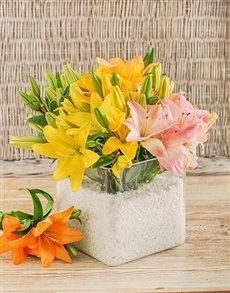 flowers: Resplendent Vase of Lilies!