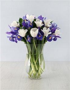 flowers: Irises & Tulips in Hurricane Vase!
