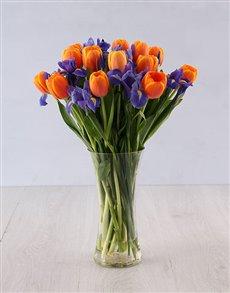 gifts: Iris and Tulip Vase Arrangement!