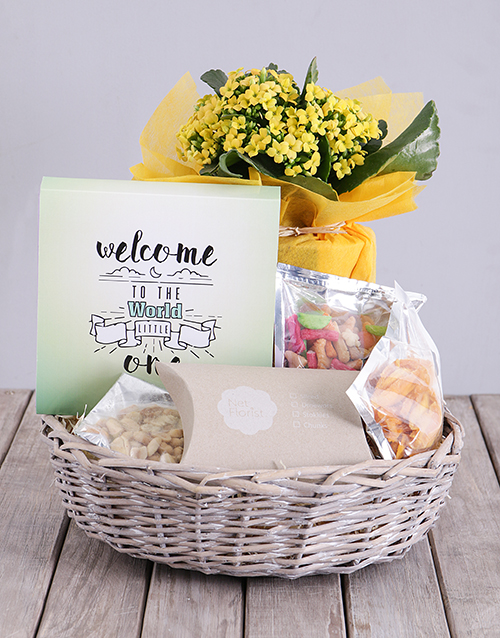 colour: Welcome Little One Kalanchoe and Snacks Basket!
