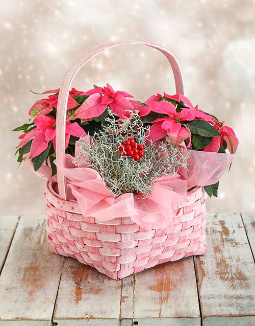 basket: Pink Poinsettia basket!