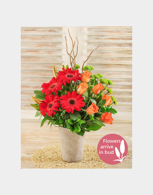 mixed: Lily Gerbera and Rose Floral Display!