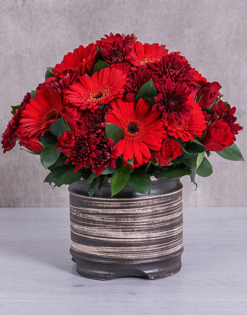 colour: Mixed Red Flowers In Ceramic Pot!