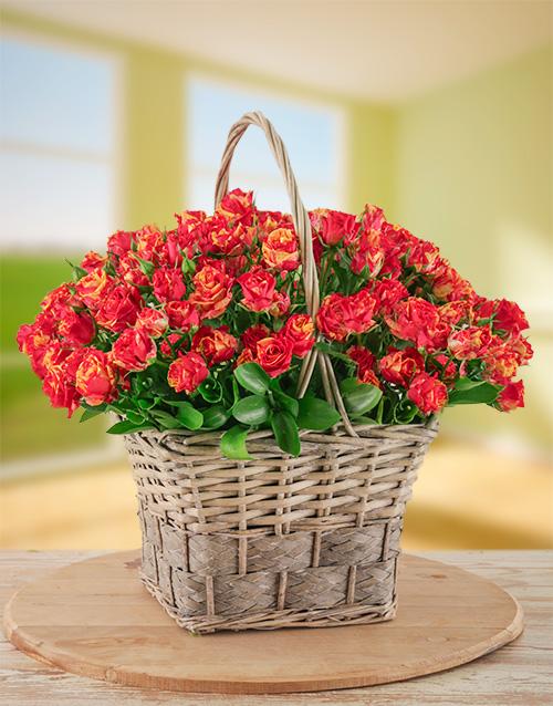anniversary: Variegated Kenyan Cluster Roses in a Basket!