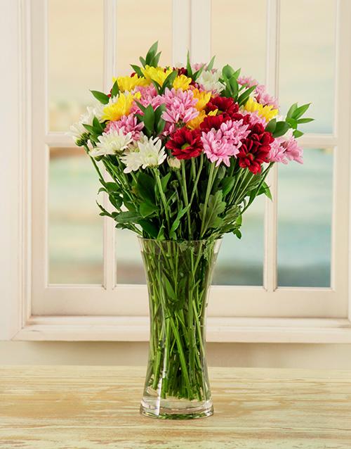 colour: Mixed Daisy Vase!