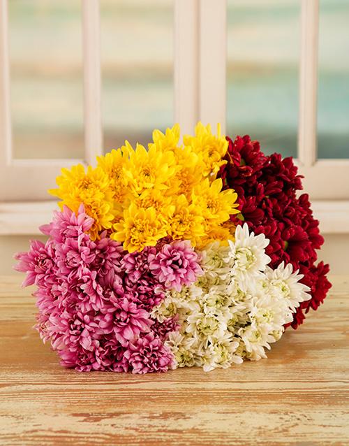 colour: Crazy Daisy Bouquet!