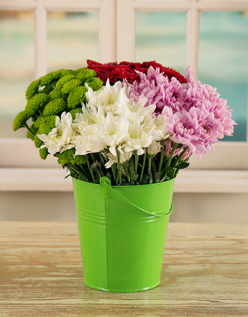 flowers: Daisies in a Bucket!