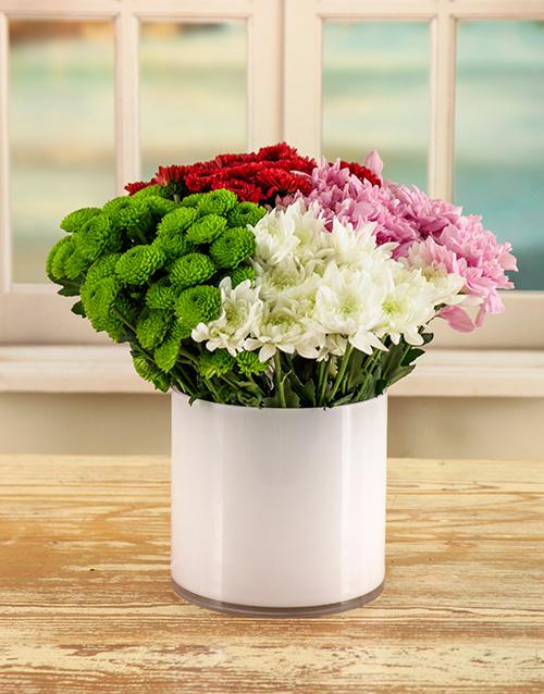 colour: Charming Daisy Arrangement!