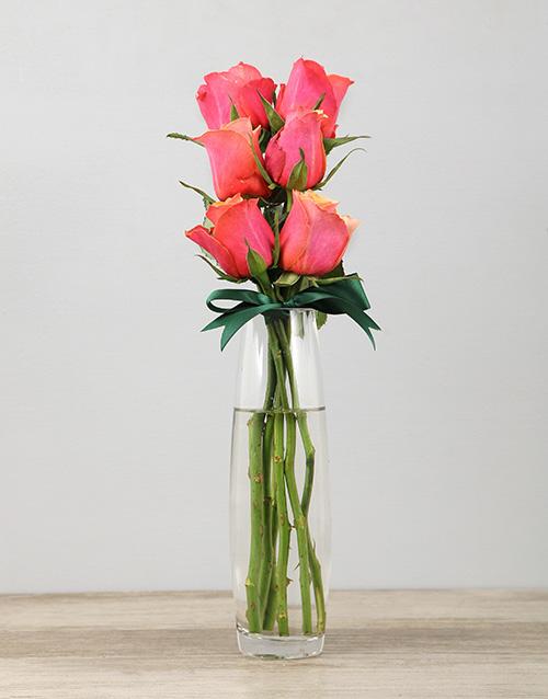 colour: Cherry Brandy Roses in a Bullet Vase!
