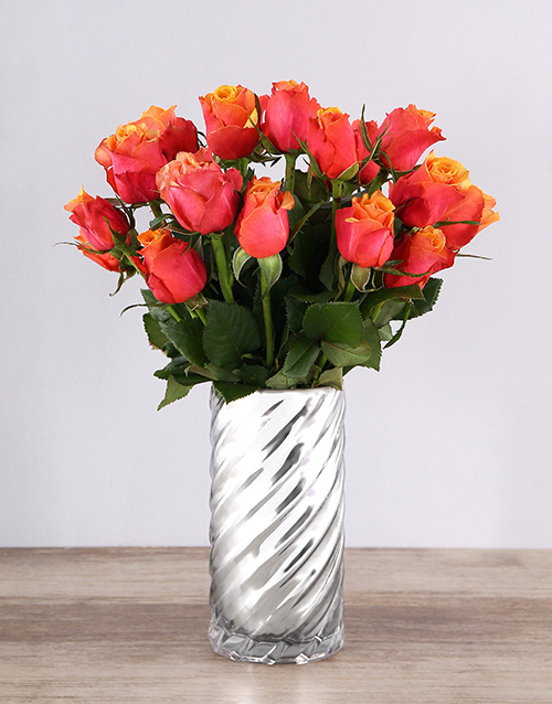 apology: Cherry Brandy Roses in a Twirl Vase!