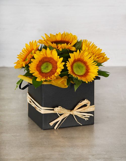 in-a-box: Green Button Sunflowers in Black Box!