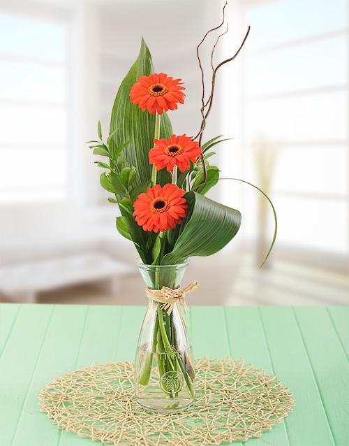 friendship: Petite Stepped Orange Gerbera Gift!