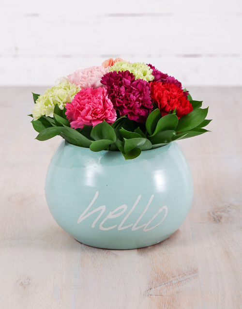 colour: Mixed Carnations in Hello Pot!