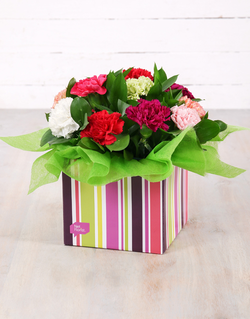 colour: Mixed Carnations in Striped Box!
