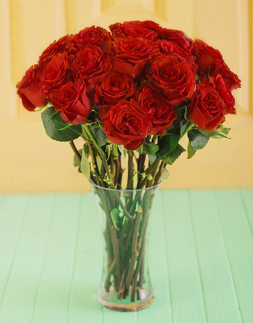 colour: Red Giant Ethiopian Roses in a Vase!