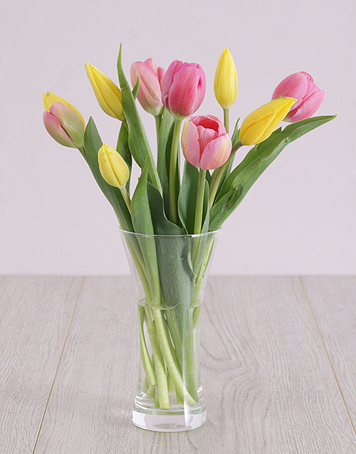 colour: Pink and Yellow Tulips in Vase!