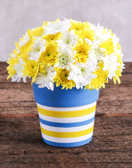 colour: Sprays in Blue and Yellow Pottery!