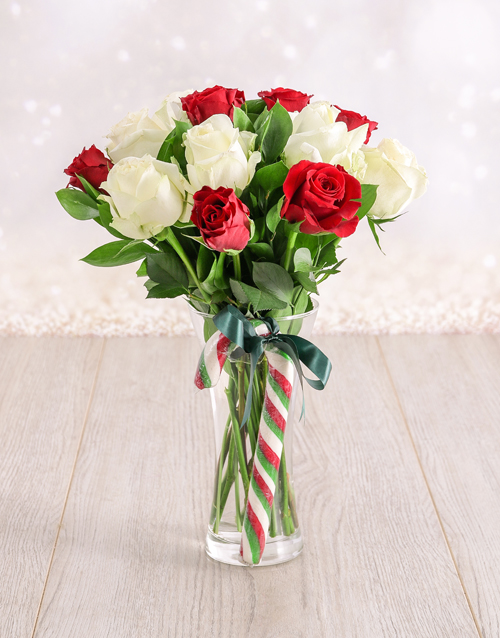 colour: Red and White Candy Cane Roses in a Vase!