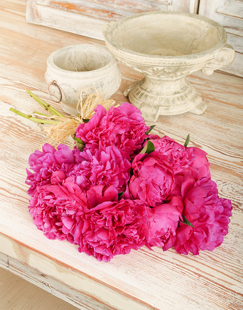 get-well: Bouquet of Cerise Pink Peonies!