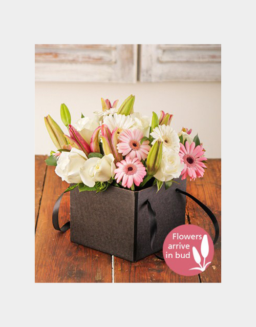 colour: Pastel Flowers in a Box!