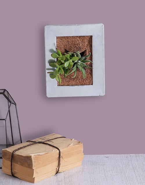 plants: Succulent Photo Frame!