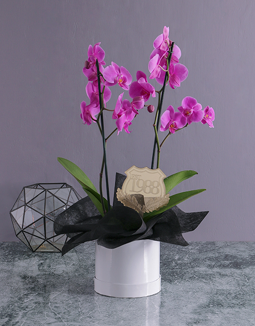 anniversary: Personalised Date Orchid in a Hatbox!