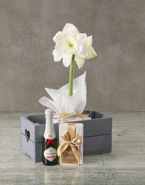 new-years: White Amaryllis Chocolate Hamper in Heart Crate!