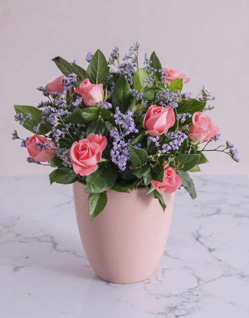 colour: Pink Sapphire Roses in a Pot!