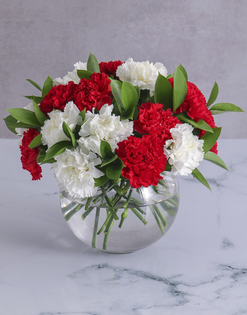 colour: Striking Red and White Carnations in a Round Vase!