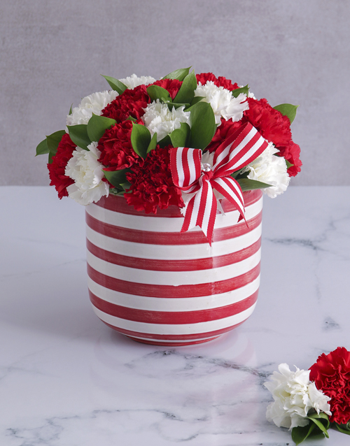 year-end: Red and White Carnations in a Stripy Pot!