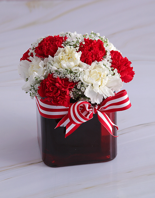christmas: Red Drop Carnations in a Vase!