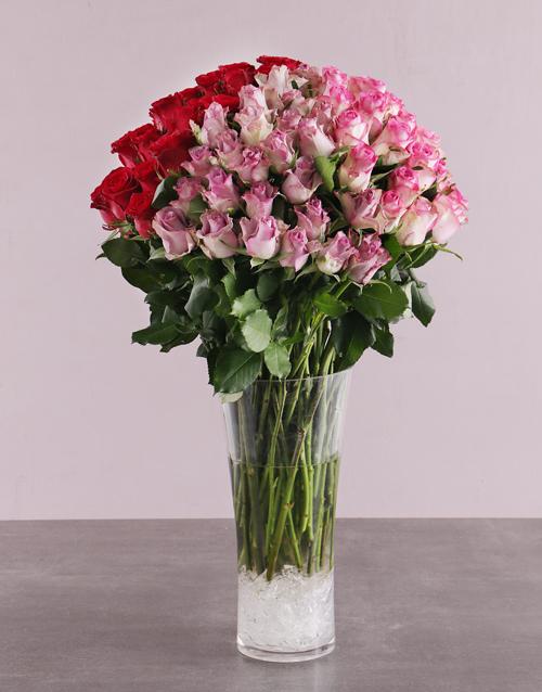 anniversary: Colourful Rose Quartet!