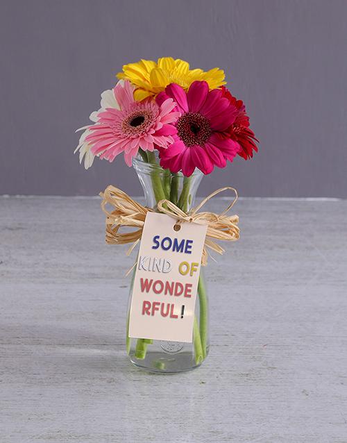 friendship: Wonderful Gerbera Vase!