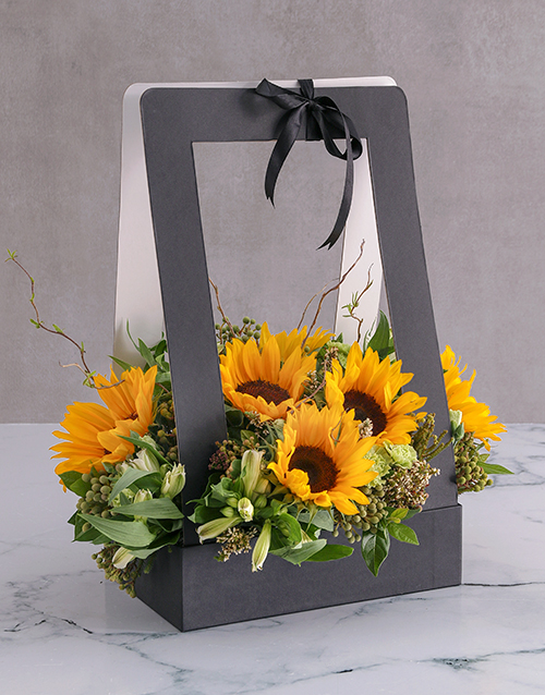 apology: Sunflower Display in a Black Box!