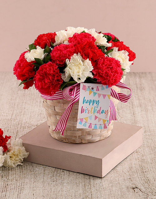 carnations: Red and White Birthday Carnation Surprise!