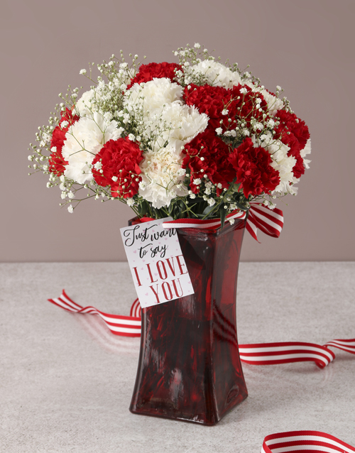 coloured-vases: Mesmerising Mixed Carnations in a Red Vase!