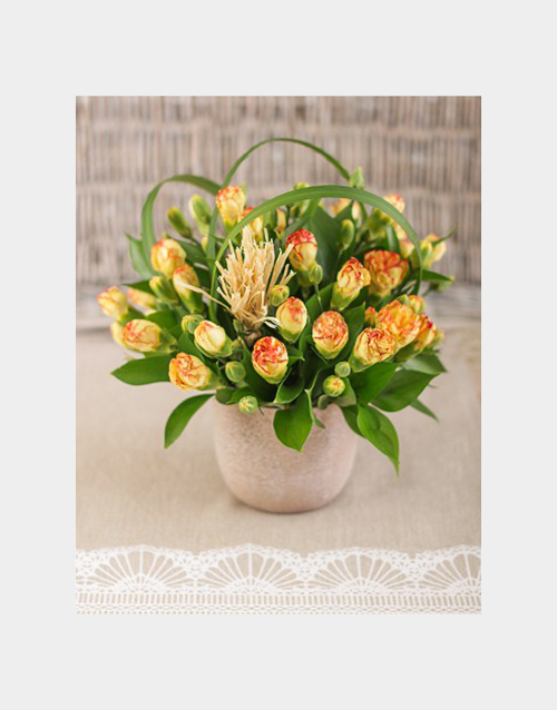 carnation: Mini Carnations in a Pottery Vase Petite!