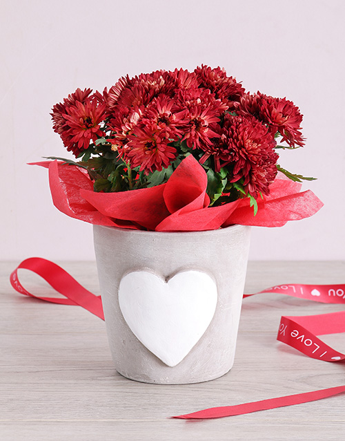 colour: Maroon Chrysanthemum in Heart Pottery!